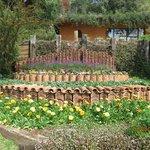 Jardim com telhas