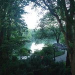 Early morning magic among lake and greens.