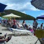 beachside on Coki Beach, St. Thomas