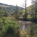Nearby Dovedale