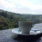 A cup of coffee in the lobby with a beautiful view.