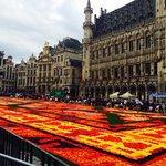 Town flower show
