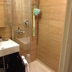 the incredibly stupid shower