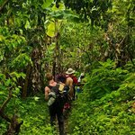 Trekking Inca Jungle