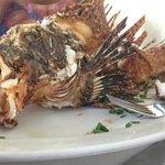 Whole Lionfish