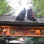 Bears at the entrance