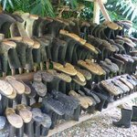 boots+ for all to choose  if walks likely to be  muddy!