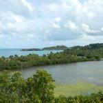 Overlooking Galley Bay