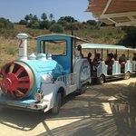 le petit train pour aller à la plage