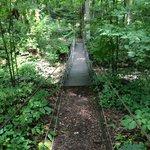 The bridge to no where