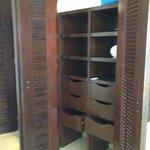 closet with built ins