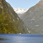 Milford Sound: landscape from the boat
