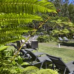 Porto Bay Serra Golf - gardens
