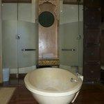 The Bathroom--No Big Deal.