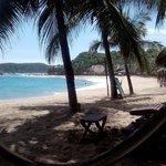 Palmeras, sol y playa