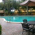 pool looks nice
