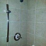 Handicap shower missing hand-held shower spray unit