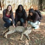 Perfect Wilderness Tours and Safaris - Day Tours