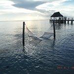 hammok in the water