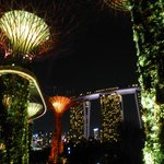 Super Tree Grove light show in the evening. In the background Marina Bay Sands towers.