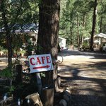 Tina's Cafe tucked away in the trees