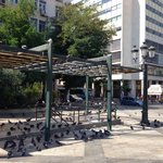 The Kotzia square is full of pigeons.
