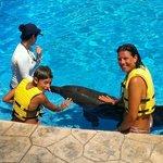 Delfinario del Barceló