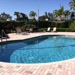Our beautiful Swimming Pool