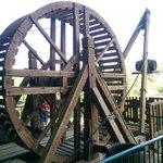 Treuil à roue
