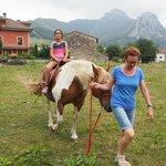 Finca del hotel y caballo