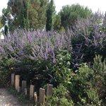 Les Jardins du MIP