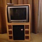 "tv tubo 29"""