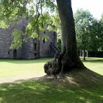Shady picnic area at Huntingtower Castle