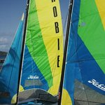 Blue Rush delivered Hobie Cats to Aquamare Beach July 2014