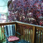 privacy afforded by shrubs on front deck