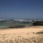 Costa a nord di Corallejo