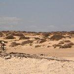 Costa a nord di Corallejo vista verso l'interno