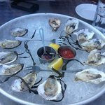 Cold water oysters