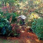 Hidden Cottage view from top garden