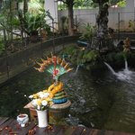 pond in the dining area