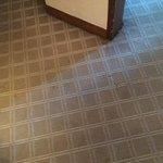 Carpet needs some TLC