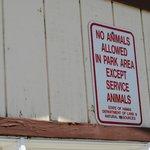 介助犬等以外の動物、連れ込み禁止。