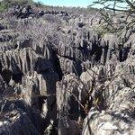 Les Tsingy d'Ankarana