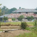 A photo of the homestay from a distance