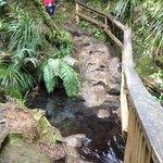 slippery stream to ford