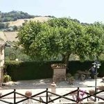 The old mulberry tree with restaurant entrance on the left