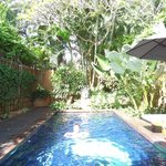 The beautiful private pool and gardens of Villa 5