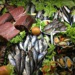Fridge of sea products