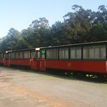 Trams all in a row