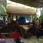 Durian ucok br datang